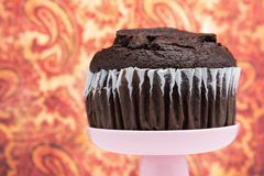Chocolate Muffin. A chocolate muffin on a pink dessert stand pedestal against a  fun background in a dessert shop royalty free stock photos