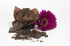 Chocolate muffin. Muffin with a pink gerber flower Royalty Free Stock Image