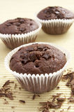 Chocolate muffin sweet cake food Royalty Free Stock Photo