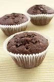 Chocolate muffin sweet cake food Royalty Free Stock Images