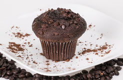 Chocolate Muffin with Syrup. On a white plate with cocoa powder and coffee beans royalty free stock images