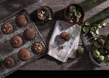 Chocolate muffin topped with walnuts Stock Photos