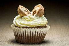 Chocolate muffin and with walnut Royalty Free Stock Photos