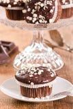 Chocolate muffin. Stock Image