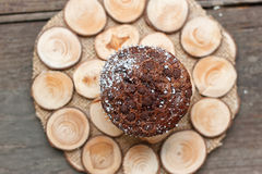 Chocolate muffin on a wooden stand Stock Photo