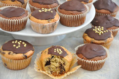 Chocolate muffinc Royalty Free Stock Images