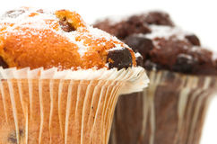 Chocolate Muffins. Against a white background Stock Images