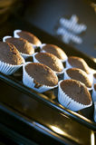 Chocolate muffins. Inside the electric oven royalty free stock images