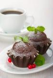 Chocolate muffins Stock Image