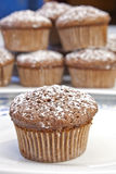 Chocolate Muffins. Freshly baked chocolate muffins sprinkled with powdered sugar Stock Photography