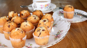 Chocolate Muffins. Afternoon tea in England with chocolate muffins and a nice cup of tea royalty free stock photo