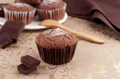 Chocolate muffins Royalty Free Stock Photo