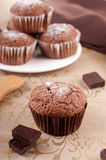 Chocolate muffins. Homemade muffins with dark chocolate Stock Images