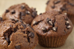Chocolate muffins. Close-up view of delicious chocolate muffins Royalty Free Stock Photography