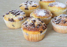 Chocolate muffins. Some chocolate muffins in gray background Royalty Free Stock Photos