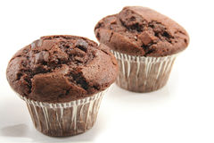 Chocolate Muffins. Two tasty chocolate muffins, focus on front one Stock Photography