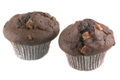 Chocolate muffins. Stock Image