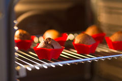 Chocolate muffins. Baked in oven Stock Photos
