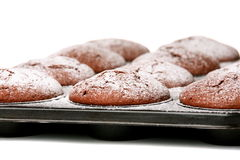 Chocolate muffins in baking tray Royalty Free Stock Photos