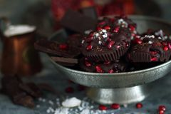 Chocolate with pomegranate fruits and sea salt Stock Images