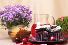 Chocolate muffins and berry drink Royalty Free Stock Images