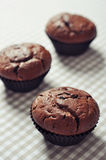 Chocolate Muffins Royalty Free Stock Photography