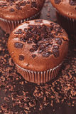 Chocolate muffins Royalty Free Stock Images