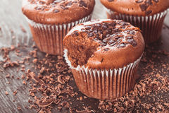 Chocolate muffins Royalty Free Stock Image