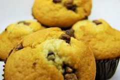 Chocolate muffins close up royalty free stock photos