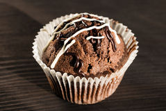 Chocolate muffins close-up Stock Photography