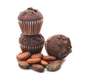 Chocolate muffins and cocoa beans Stock Images