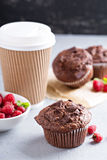 Chocolate muffins with coffee to go Stock Photography