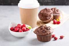 Chocolate muffins with coffee to go Royalty Free Stock Photography