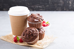 Chocolate muffins with coffee to go Stock Images