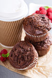 Chocolate muffins with coffee to go Royalty Free Stock Images