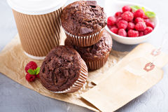 Chocolate muffins with coffee to go Royalty Free Stock Photos