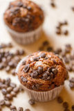 Chocolate muffins with coffee Stock Photo