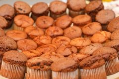 Chocolate muffins on a display Royalty Free Stock Photo