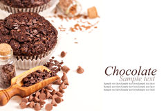Chocolate muffins Stock Images