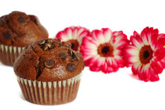 Chocolate muffins and flowers Royalty Free Stock Photography