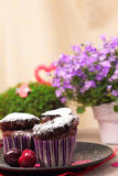Chocolate muffins and flowers Stock Photo