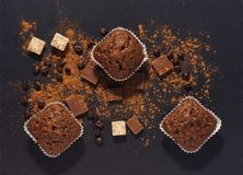 Chocolate muffins on a gray surface with cocoa powder. View from above. royalty free stock photography