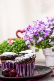 Chocolate muffins and lemonade Royalty Free Stock Photos