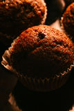 Chocolate muffins with nuts on dark background, selective focus. Chocolate muffins with nuts on dark  background, selective focus Stock Photography