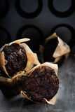Chocolate muffins over dark background Royalty Free Stock Photography