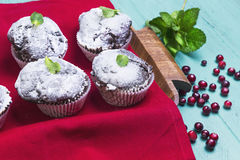 Chocolate muffins in paper sprinkled with powdered sugar. On a light wooden table in rustic style, some chocolate muffins in paper sprinkled with powdered sugar Royalty Free Stock Photos