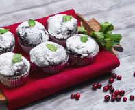 Chocolate muffins in paper sprinkled with powdered sugar. On a light wooden table in rustic style, some chocolate muffins in paper sprinkled with powdered sugar Stock Image