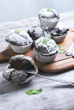 Chocolate muffins in paper sprinkled with powdered sugar. On a light wooden table in rustic style, some chocolate muffins in paper sprinkled with powdered sugar Stock Images