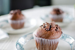 Chocolate muffins on porcelain dish Royalty Free Stock Photography