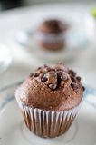 Chocolate muffins on porcelain dish. Oriental Tea with chocolate muffins Royalty Free Stock Photography